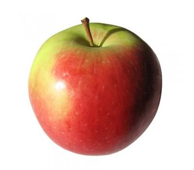 """Яблуко """"Горець"""""""
