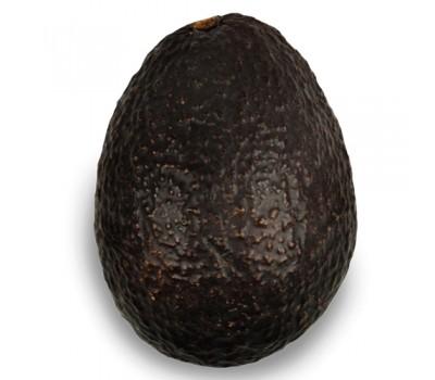 Авокадо чорне Хаас