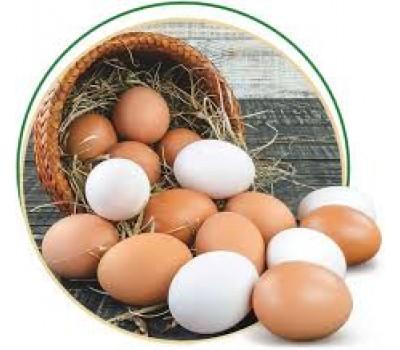 Яйце куряче домашнє