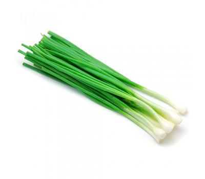 Цибуля зелена вагова