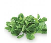 Листя валеріани (маш салат) фасований, шт